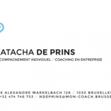 092 - NDP - business-verso